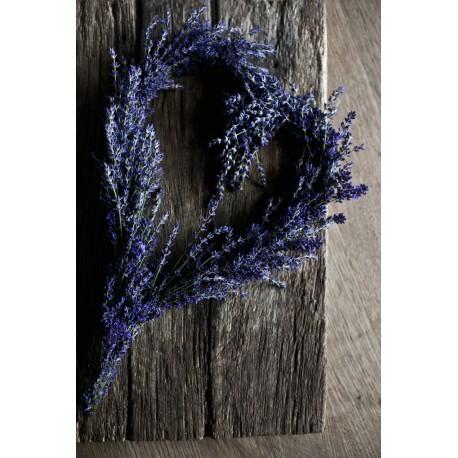 Lavendel workshop