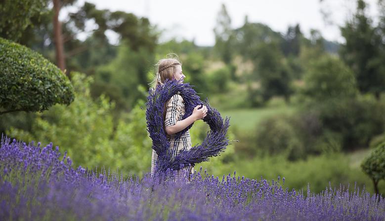 Lavendelhjerte